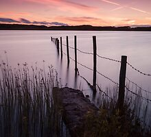 Kenfig Pool posts Porthcawl by leightoncollins