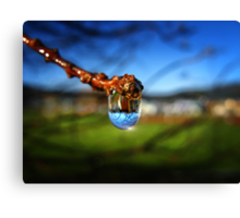A Raindrop in a Suburb, a Suburb in a Raindrop Canvas Print