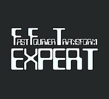 Fast Fourier Transform Expert by ixrid