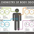The Chemistry of Body Odours by Compound Interest