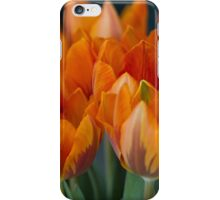 tulips in bloom iPhone Case/Skin