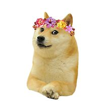 Doge with flowercrown. by Pascalle