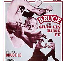 Bruce & Shaolin kung Fu by zeebigfella