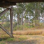 Under the Bridge  by janewiebenga