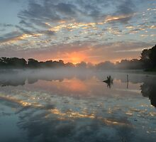 Heron Pond Sunrise by Kasia Nowak