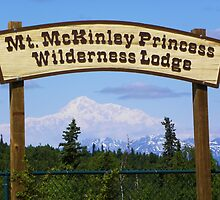 Mt. McKinley by gcampbell