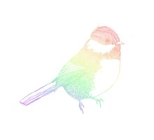 Rainbow Bird by JessicaADesign
