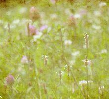 wild grass 18 by vigor