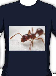Extreme macro Ant on a clematis petal T-Shirt