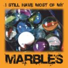 Lost Your Marbles? by Mark Wilson