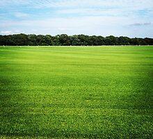 Field by ethanbeirne