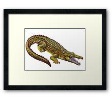 Vintage Crocodile Framed Print