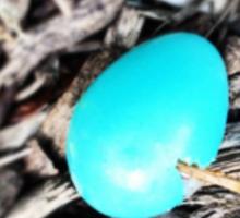 Robin's Egg Sticker