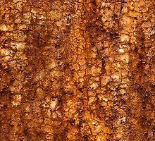 Rust Texture by Dan Dexter