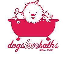 Dog Grooming Photographic Print