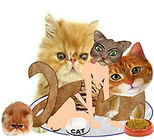 Cats (4529  Views) Photographic Print