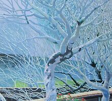 Winter Trees by ianmccourtart