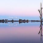 Lake Nagambie-Tranquil Dawn by nealbrey