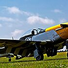 P51 mustang Ferocious Frankie by collpics