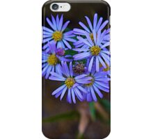 Deep Blue Leafy Aster iPhone Case/Skin