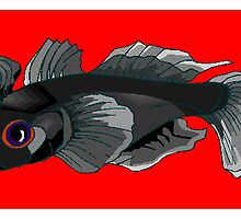 Black Goby by kwg2200