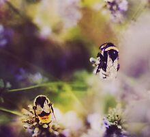 Summer Bumble Bees by Indea Vanmerllin
