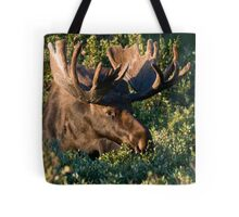 Grazing Moose Tote Bag