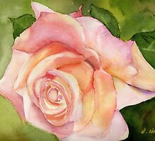 Spring Rose by Diane Hall