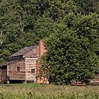 A Settlers Home by LarryB007