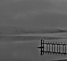 Foggy Sunrise On Tomales Bay, Marin County, California by Scott Johnson