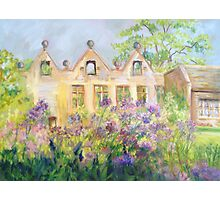 Columbine Meadow Rue at East Riddlesden Hall Photographic Print
