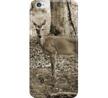 Smoky Mountains Scene-0008099 iPhone Case/Skin