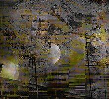 Subjective Report  by Danica Radman