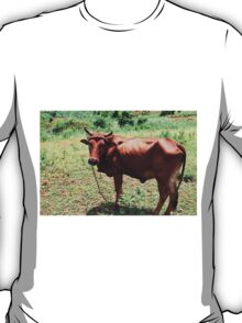 Young Bull, Jinja Uganda T-Shirt
