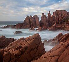 The Pinnacles by Travis Easton