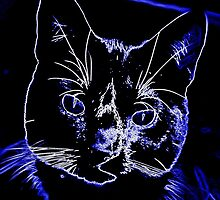 Neon cat by Miirthe