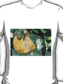 lemon in spring T-Shirt