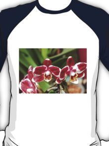 orchid bloom T-Shirt