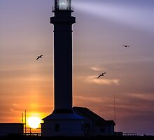 Point Arena Lighthouse by Gary Gray
