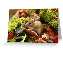 Life In Miniature Greeting Card