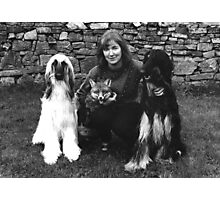 The fox and the Hounds! Photographic Print