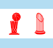 Chicago Championship Flag Sticker