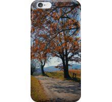 Smoky Mountains Scene-453370 iPhone Case/Skin