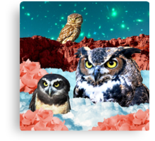 Kindly Owl Gods of the Red Mesa Canvas Print