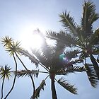 Palm Trees, CA by rachelstone