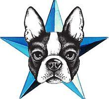 Boston terrier/blue star by Bostonterrierig