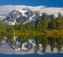 Mt. Shuksan Reflection by Barb White