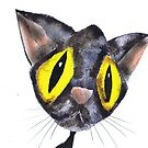 CAT by Hares & Critters
