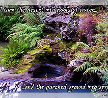 Praise Series - Pools of Water: Psalm 107:35 by MyArtefacts
