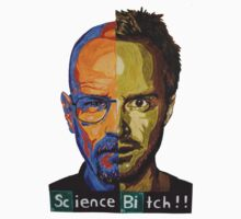 Breaking Bad Science Bitch!!! by Brandon Cooper